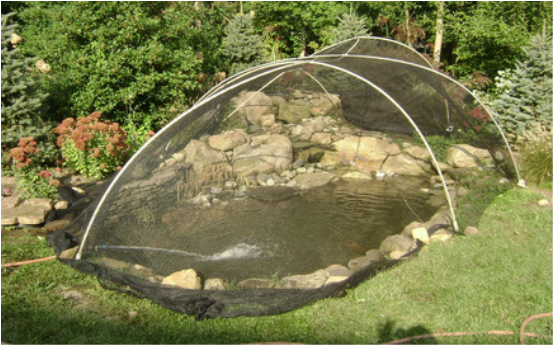 Fall Pond Netting & Maintenance Services Contractor